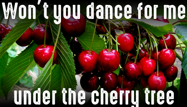 van-cherry-copy